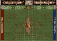Fantasy Football Spielfeld